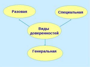 Основные виды документа