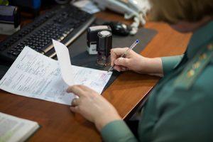 Транзитная декларация: понятие, значение документ