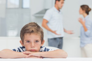 """Значение понятия """"родительские права"""""""