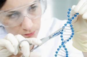 Тест ДНК для определения отцовства