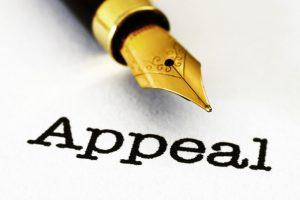 Составление апелляционной жалобы