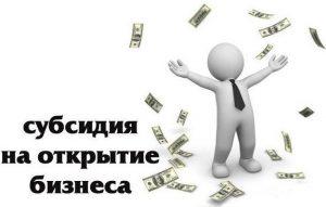 Что такое субсидия для бизнеса
